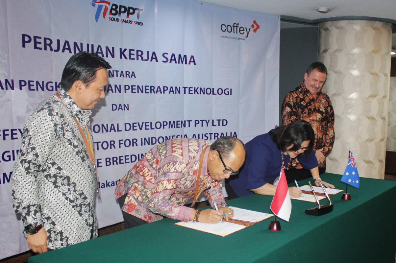 BPPT - Coffey International Development PTY LTD Sepakat Jalin Kerjasama Integrasi Sawit-Sapi